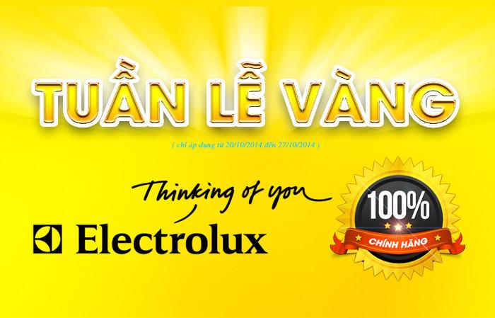 Tuần Lễ Vàng Electrolux 2014 tại Lucasa Việt Nam